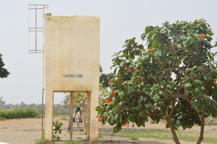 Unlocking Senegal's Agricultural Potential