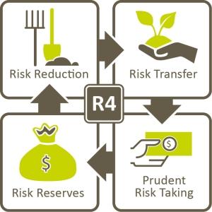 R4 Diagram, Credit World Food Program