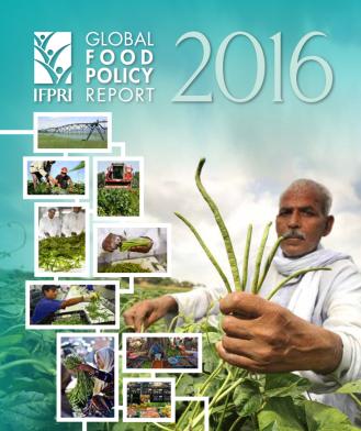 IFPRI report