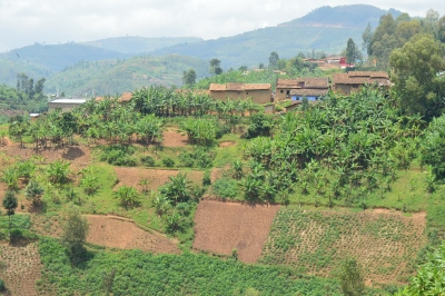 landscape Rwanda (9)