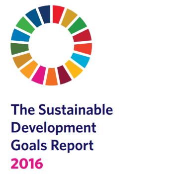 SDG report pic