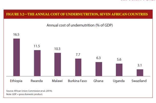 costs-of-undernutrition-to-economies